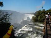 Pollito LOVED Iguazu