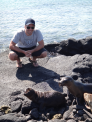 Baby sea lions 1