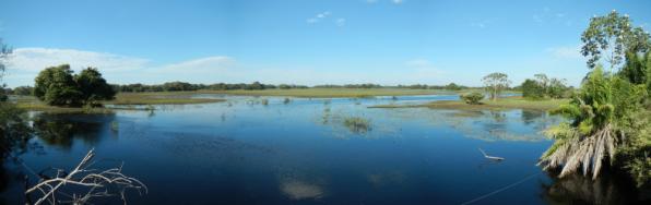 Pantanal Panorama