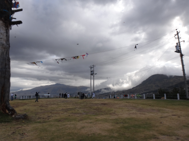 Kites in the powerlines