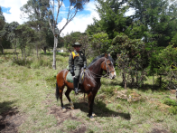Police officer in the national park