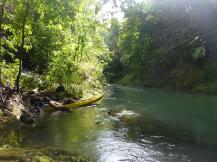 Río Agujitas 1