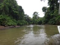 River Tortuguero NP 1