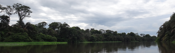 Canal Tortuguero NP